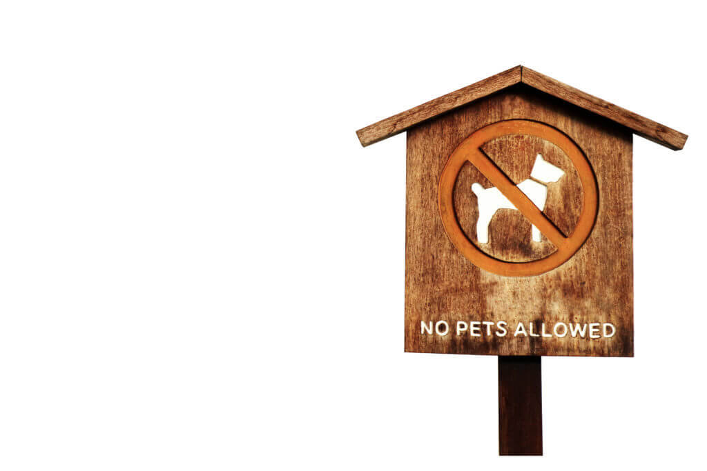 No pet allow wood banner and pillar wood isolated