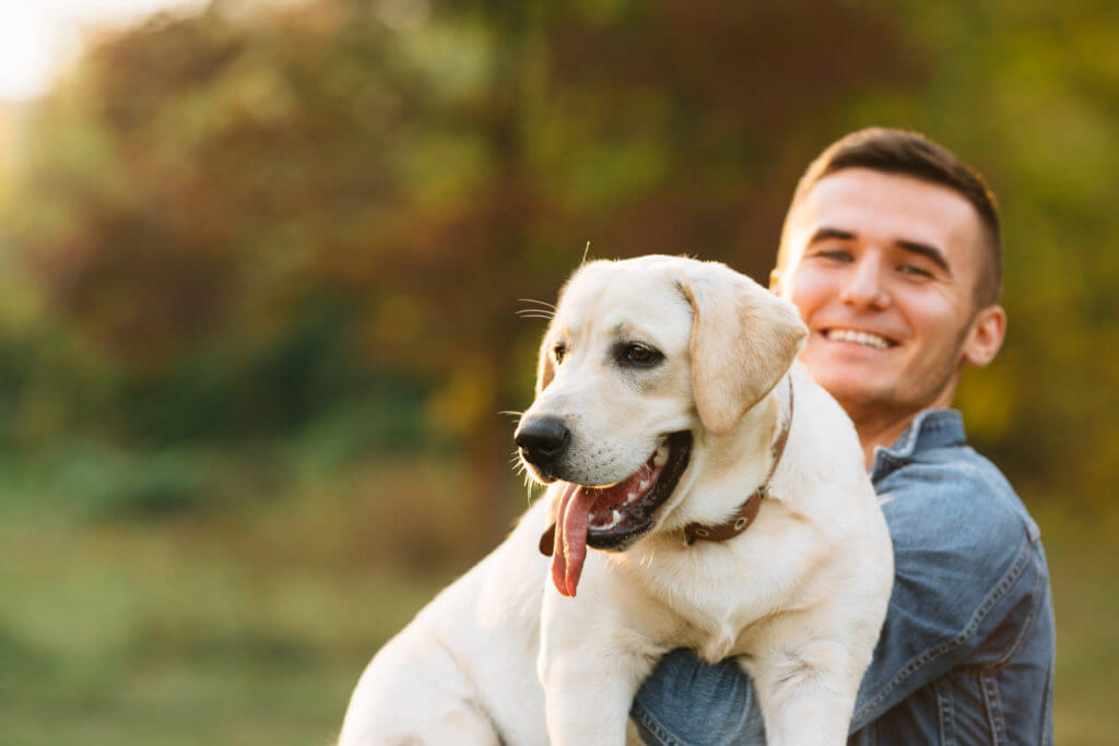 Smiling man with his dog Labrador in hands in park at sunset