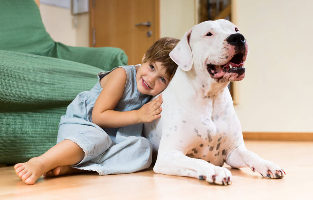 Nice girl toddler on the floor with dogo Argentino