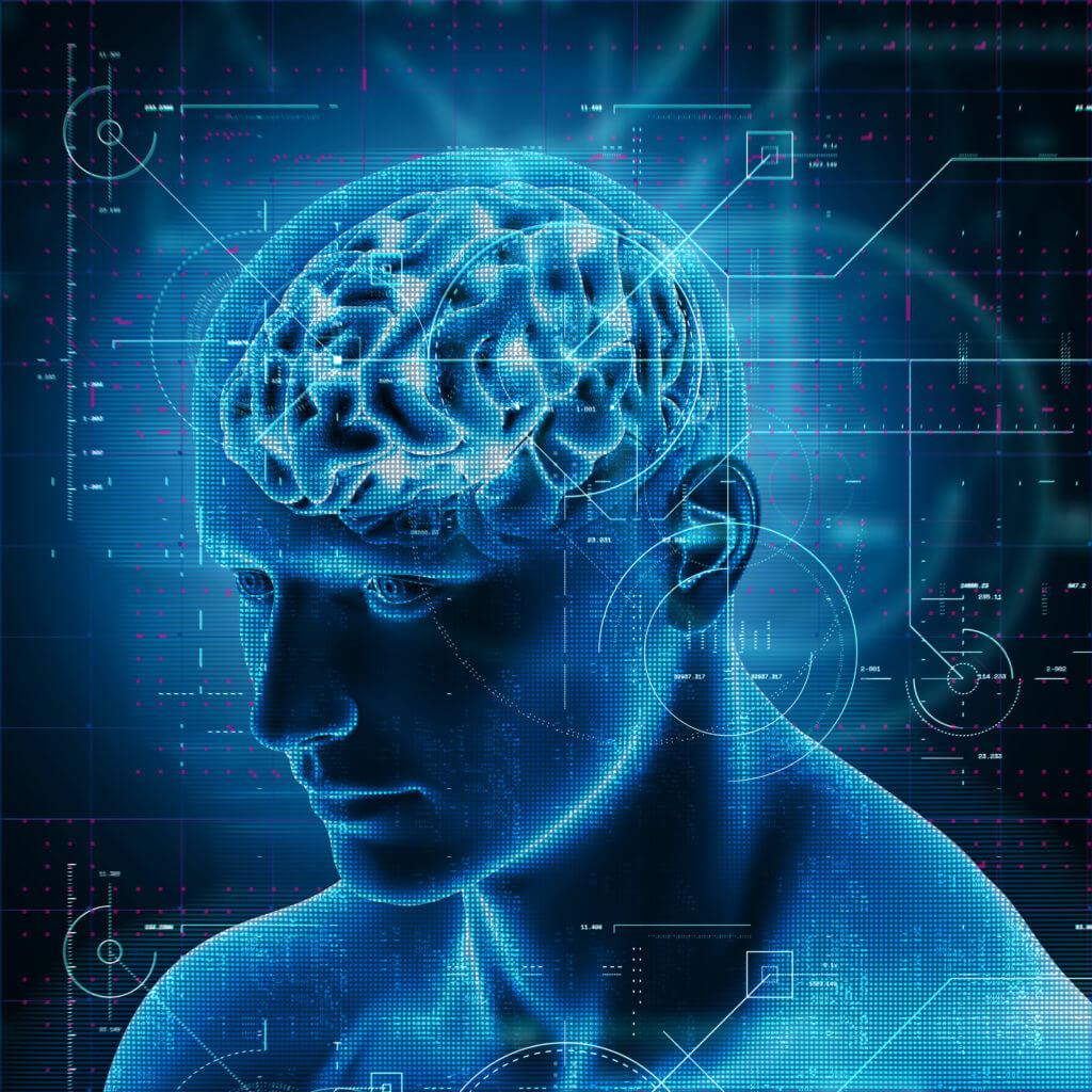 oxytocine level in the brain