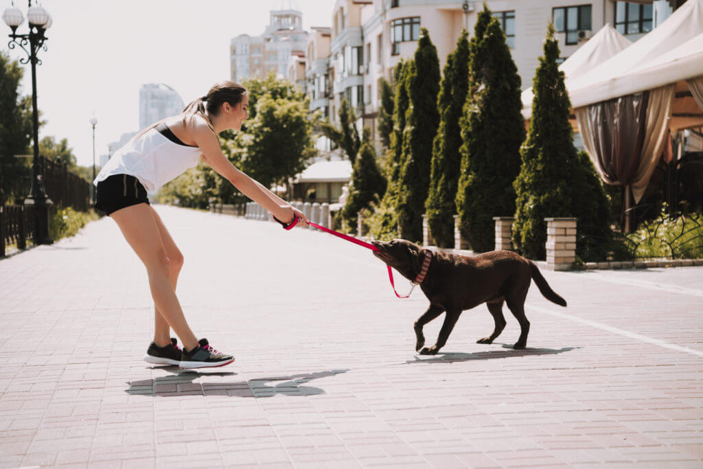 Sportswoman is Playing with Dog on City Promenade